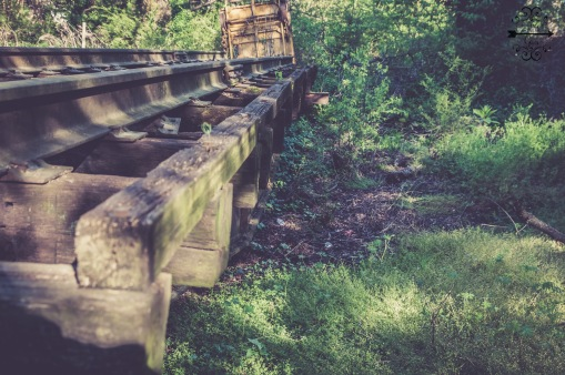 train.FTG-19